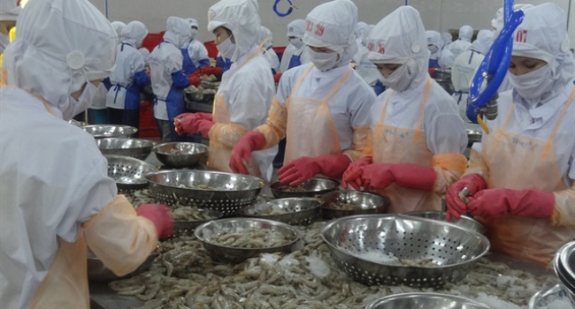 VIETNAM SHRIMP SALES TO GO ON THE RISE IN QIV