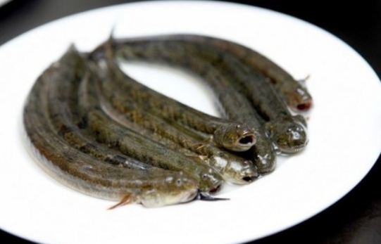 Frozen Whole Spiny Goby