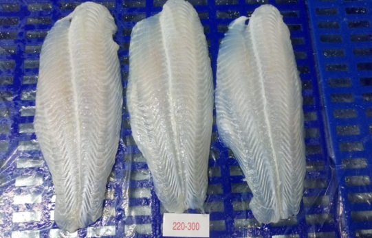 Frozen Pangasius Fillet, Well-Trimmed