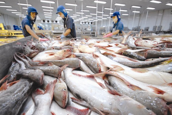 VN FILES COMPLAINT TO WTO ABOUT US ANTI-DUMPING DUTY ON FISH