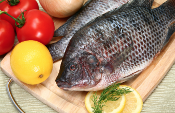 Frozen Black Tilapia Whole Round